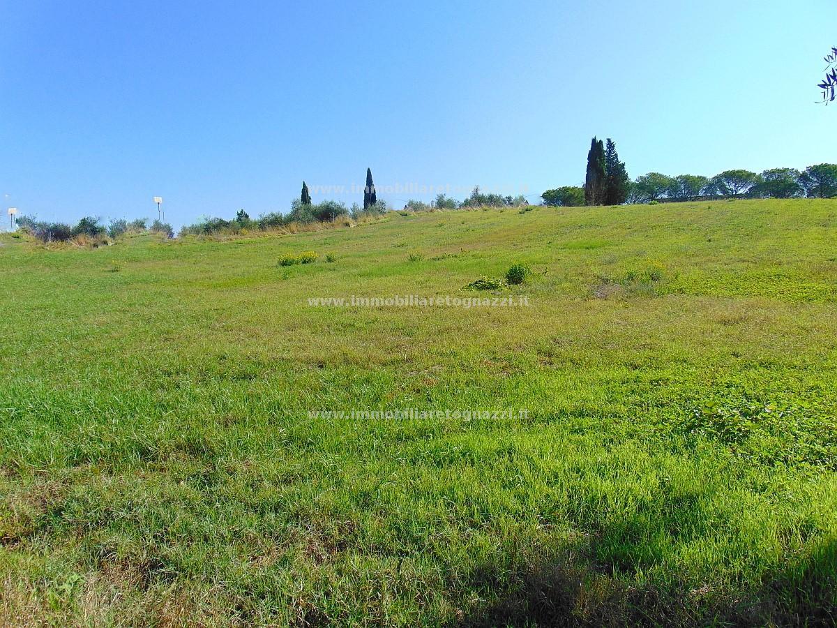 Terreno Edificabile Residenziale in vendita a Certaldo, 9999 locali, prezzo € 200.000 | CambioCasa.it