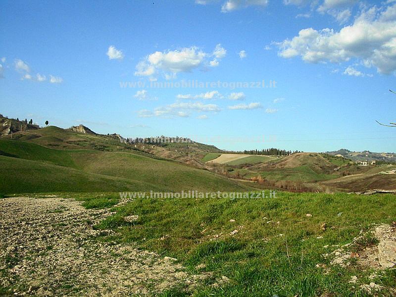 Terreno Agricolo in Vendita a Certaldo