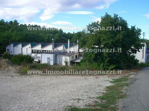 Capannone in vendita a Tavarnelle Val di Pesa, 1 locali, prezzo € 480.000 | Cambio Casa.it